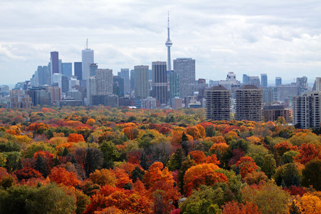 Toronto Skyline with forest in foreground